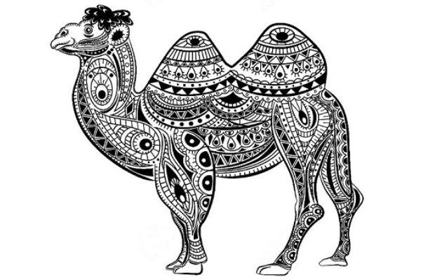 Mandalas de camellos