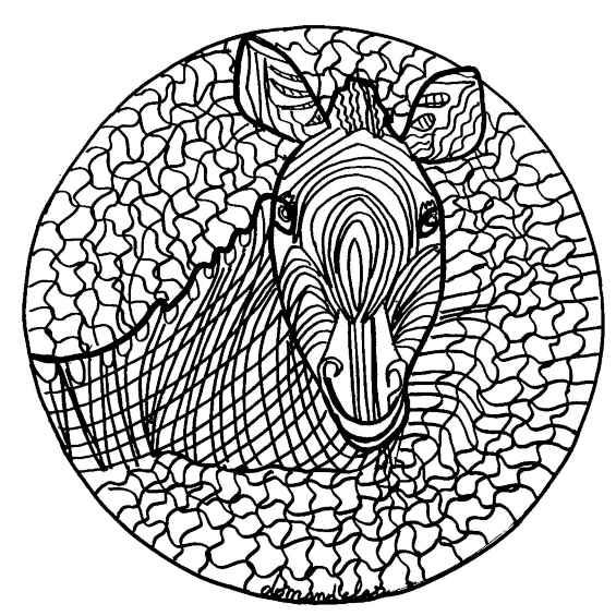 mandala con cebra