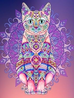 Mandalas de gatos coloreados