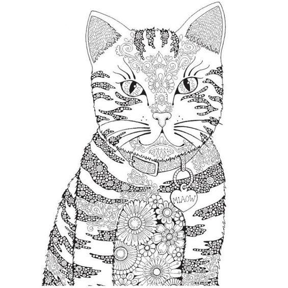 gatito mandala para imprimir