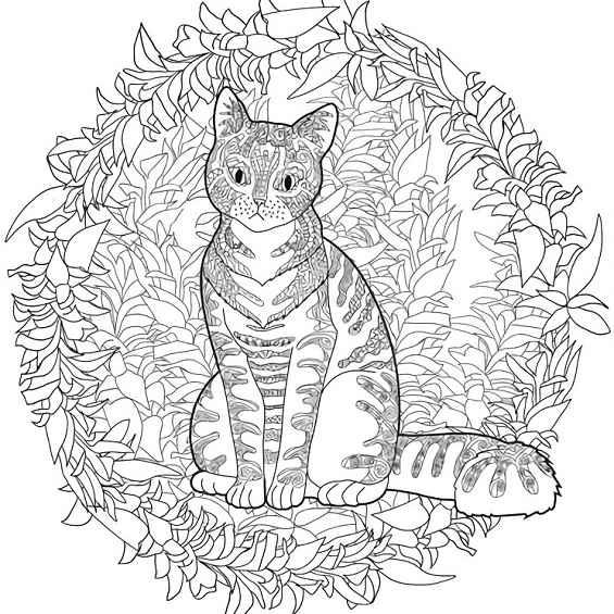 mandalas con gatos para imprimir