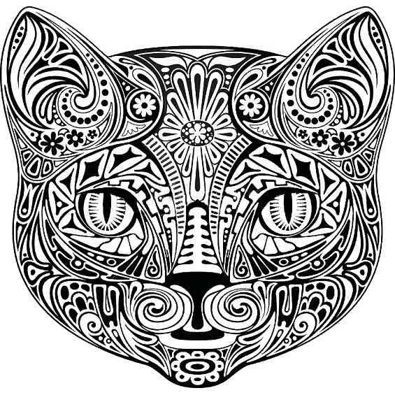 un gato mandala para colorear