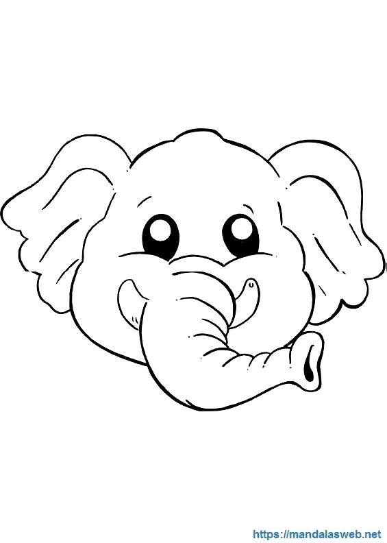 Elefante Dibujo Para Colorear Imagenes Y Dibujos Para Colorear
