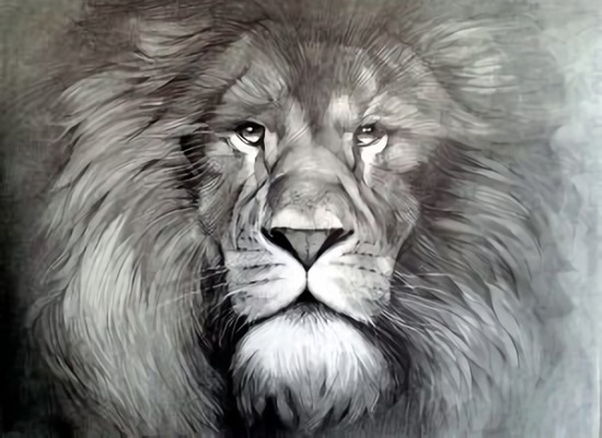Mandalas Perfectoimagenes Lápiz Pinterest Lobo Dibujos Www