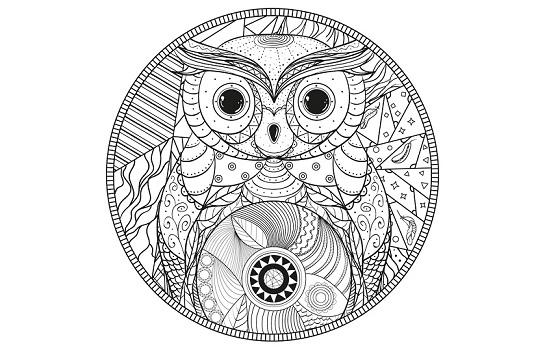 Mandalas y dibujos de búhos