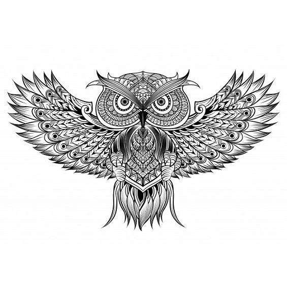 buho mandala con las alas extendidas