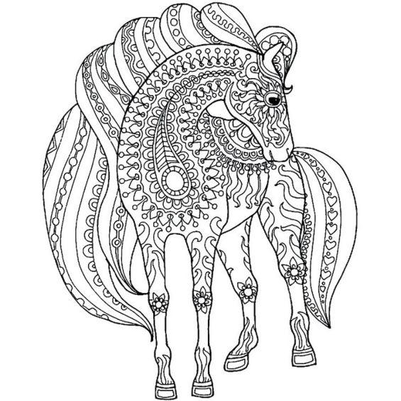 caballo mandala para colorear
