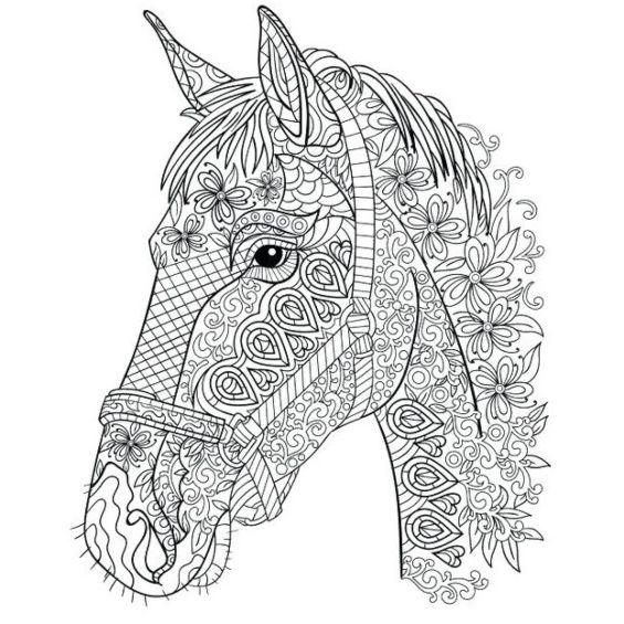 cabeza de caballo mandala para colorear