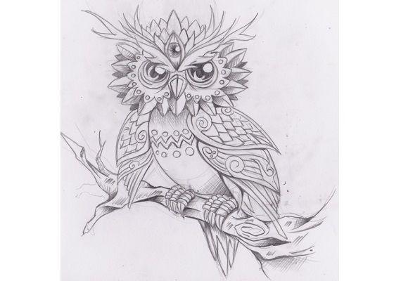 dibujo de buho a lapiz sobre una rama