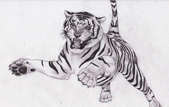 dibujo de tigre a lapiz saltando