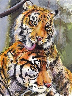 dibujo de tigres a color