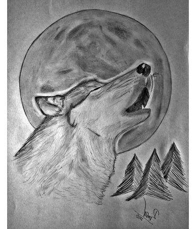 lobo aullando dibujado con lapiz