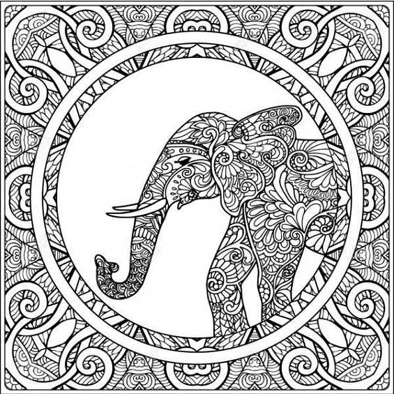 mandala de elefante facil para colorear