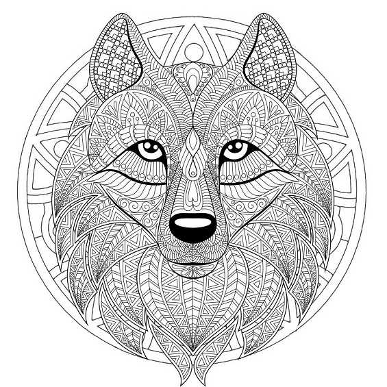 mandala de lobo para colorear e imprimir