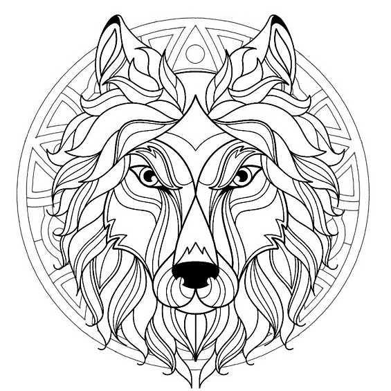 mandala de lobo para pintar