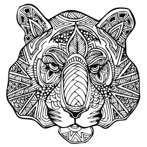 mandala de tigre para pintar