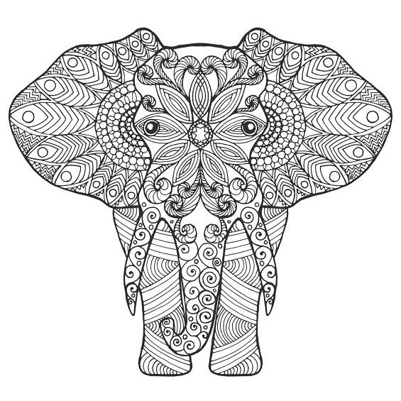 mandala elefante para pintar