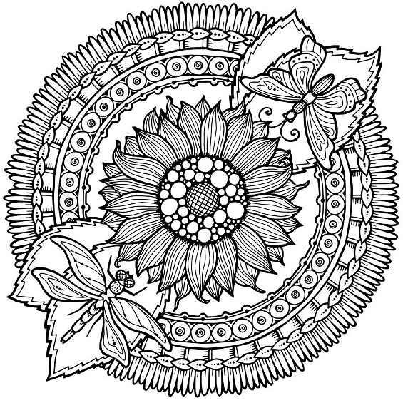 mandalas de mariposas para pintar