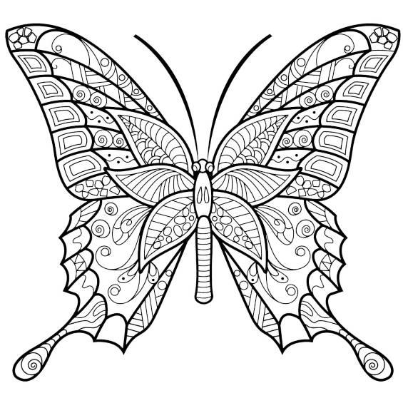 mariposa mandala para imprimir