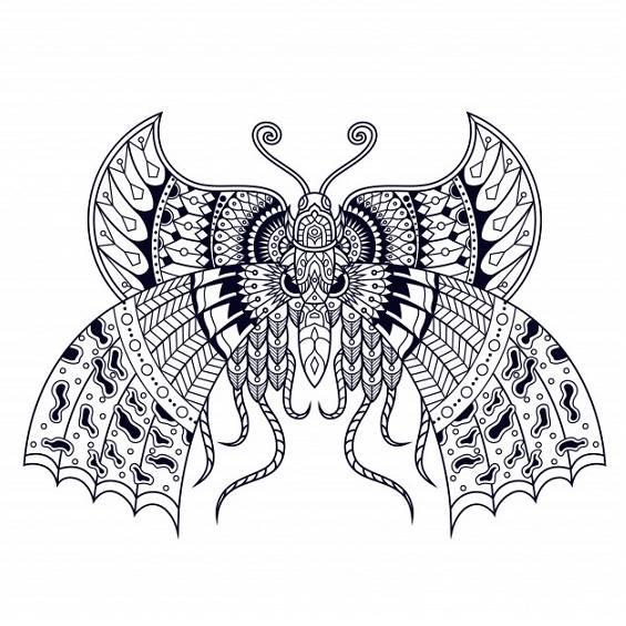 mariposa mandala para pintar
