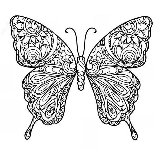 mariposa mandala