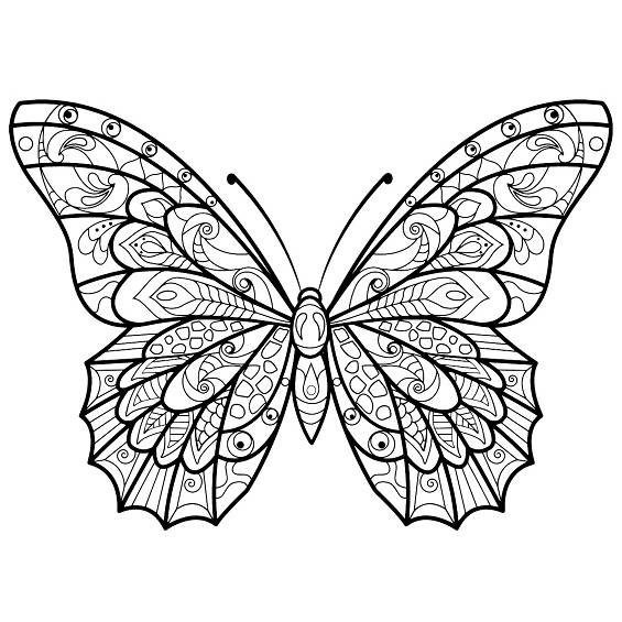 mariposas mandalas para imprimir