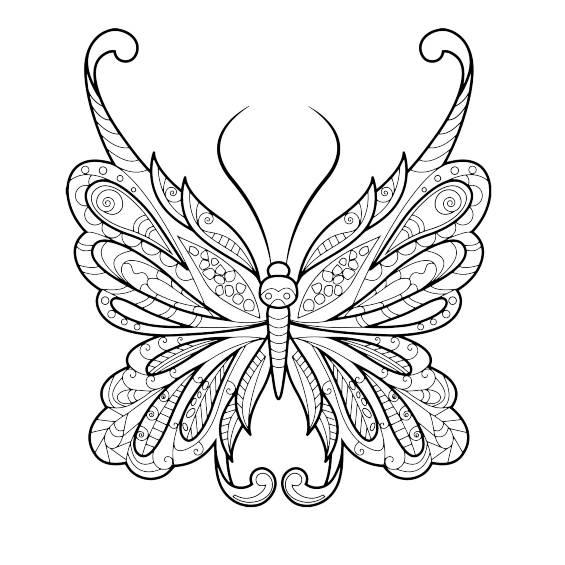otra mariposa mandala para colorear