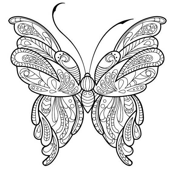 otra mariposa mandala para pintar