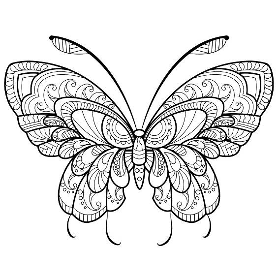una mariposa mandala