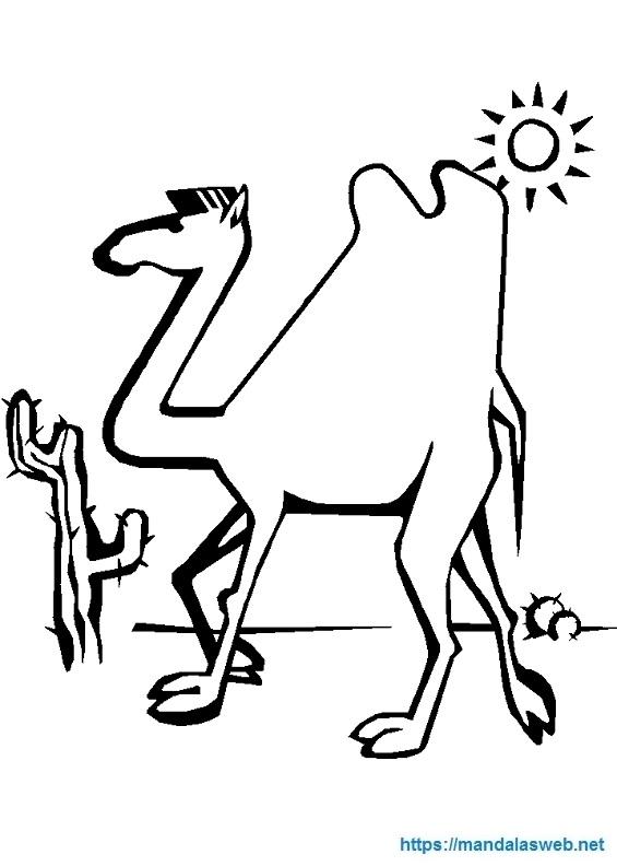 Dibujo de un camello