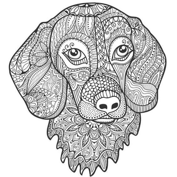 mandala de perros para colorear e imprimir