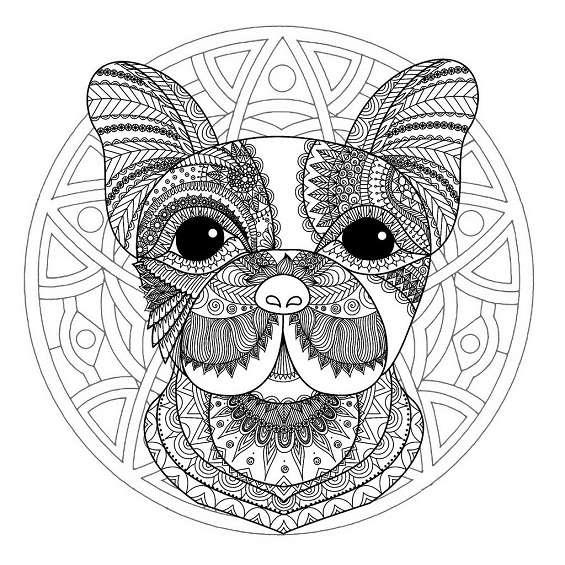 mandala de perros