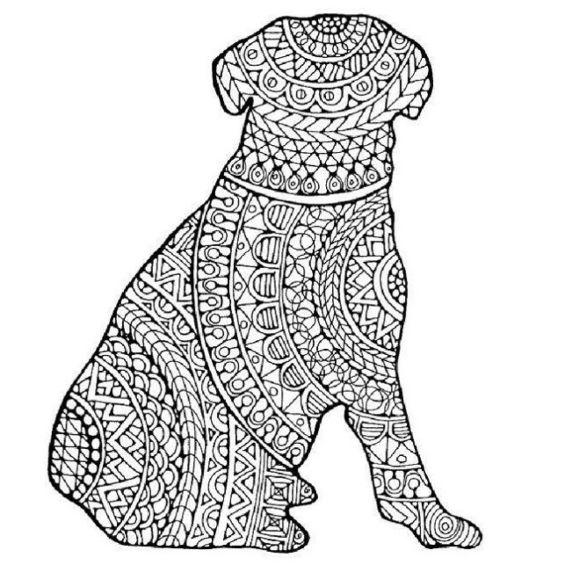 perro mandala de espaldas