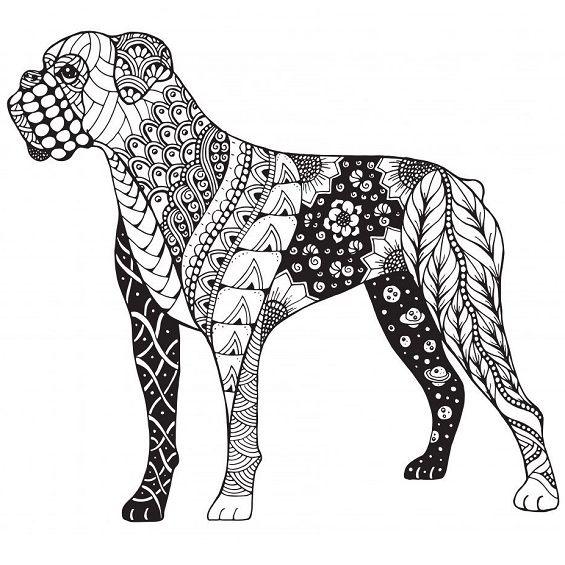 perro mandala para colorear