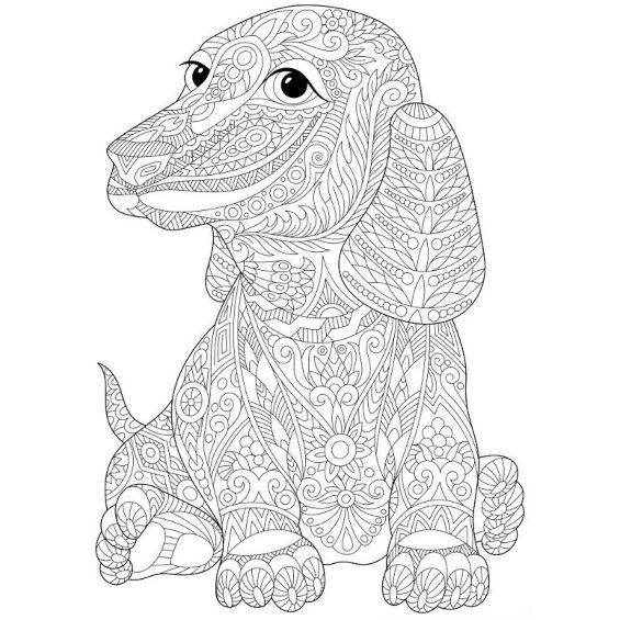 perros mandalas para pintar