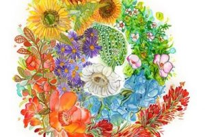 Mandalas de flores a color