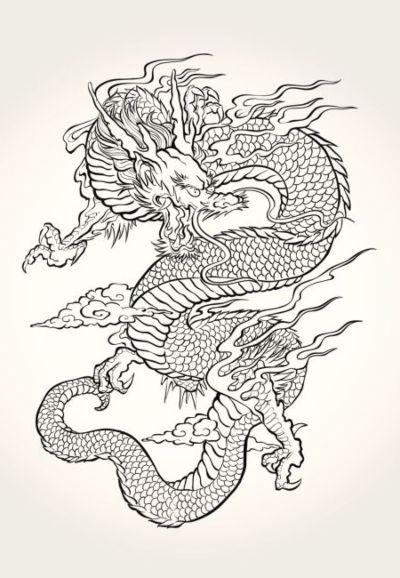 dibujos de dragones a lápiz