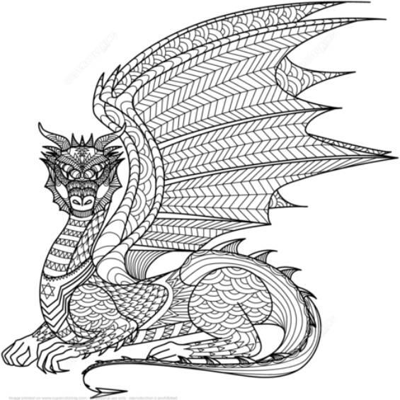 dragon mandala para colorear